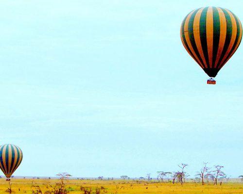 Dunia-Ballon-Safari